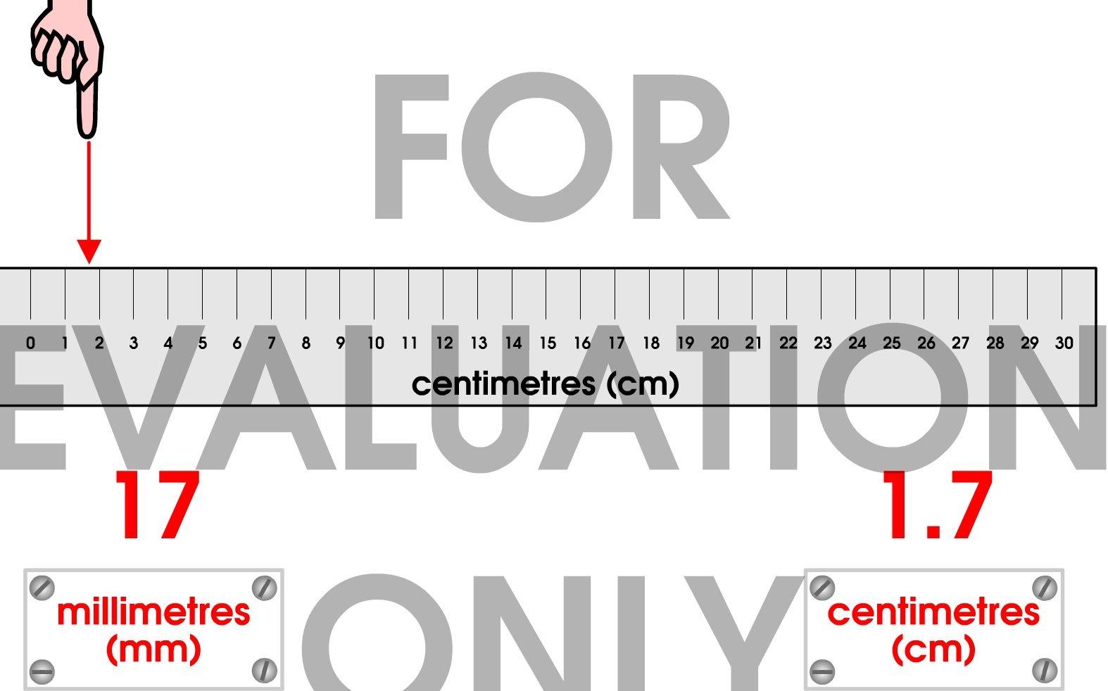 ruler30cm