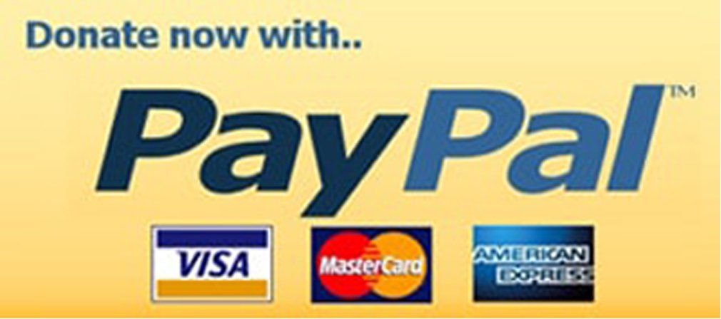 button new paypalnobordernew2